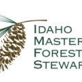 Master Forest Stewards